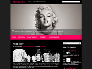 Modelling Free WordPress Fashion Theme